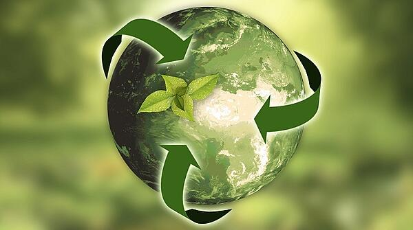 amazon-environmental